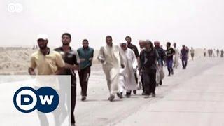 تقدم القوات العراقية وسط الفلوجة | الأخبار