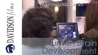 Human Brain Development: Nature and Nurture (Davidson Films)