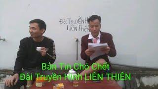 Hài Tết 2020 - Bản Tin Chó Chết phỏng vấn ý kiến người nhà của chó - Hà Tuấn TV p31