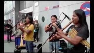 Flutes de Pan des Andes,