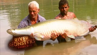 Catching A Giant Arapaima - River Monsters