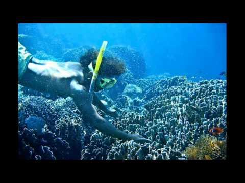 Chromatic Dream - Sound Diver