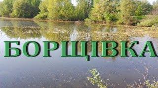 Рыбалка на ставке с. Борщовка