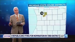Primary preview: 73rd House District