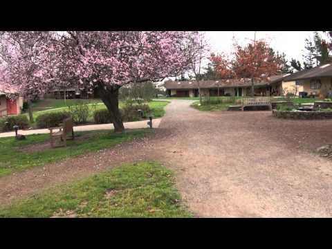 Summerfield Waldorf School, Santa Rosa