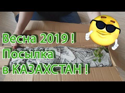 Вессенняяя посылка от Светланы Татур из Белорусии 2019!