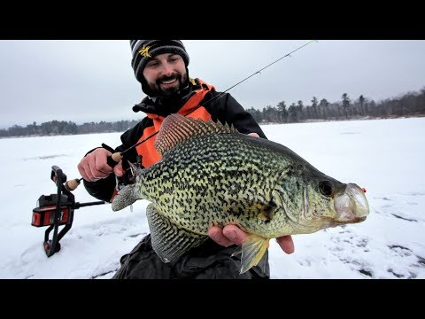 Deep Water Crappies (Tips & Guidelines)