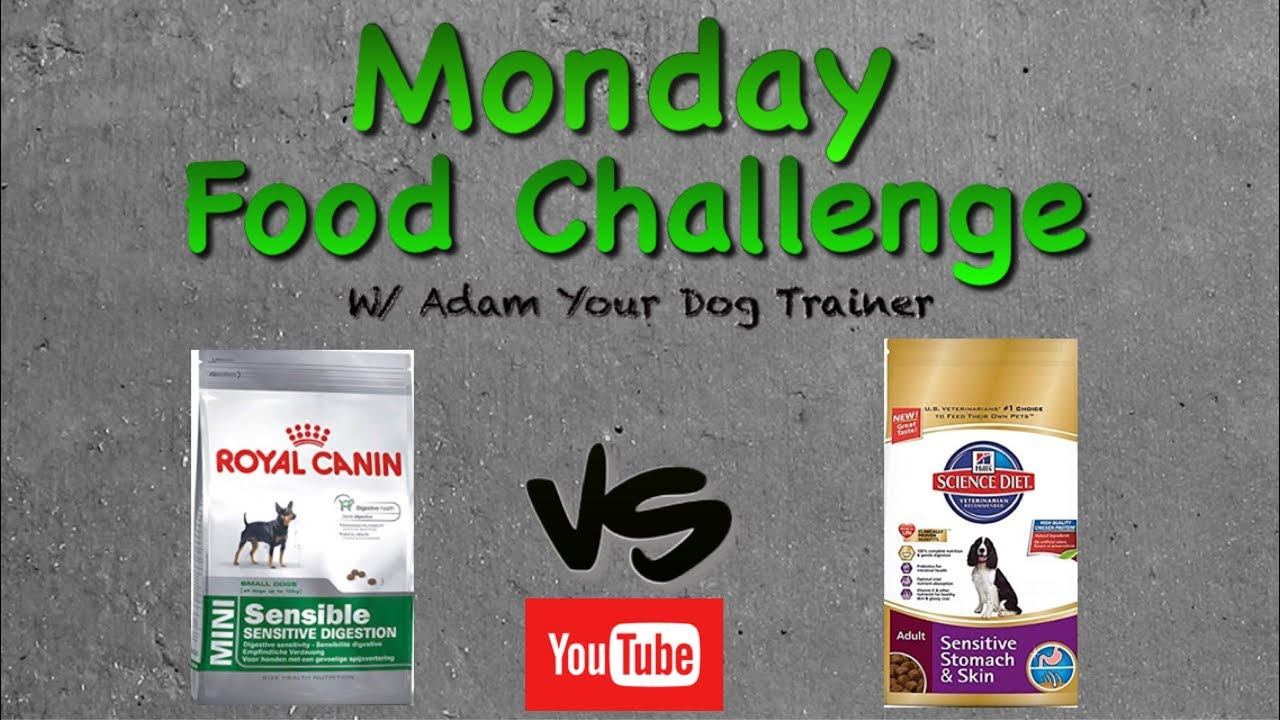 what is better royal canin or science diet