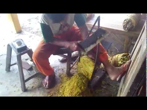 Traditional cutting tobacco in Indonesia