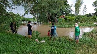 โนอึลเข้าน้ำลากปลาขึ้น คนแห่กันหว่านแห ยกสะดุ้ง สะพานข้ามบ้านแพง