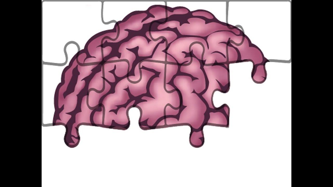 Anatomie - Hirnnerven: Nervus Facialis (Teil 1/3) - YouTube