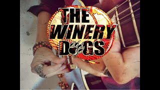 The Winery Dogs - Desire (Cover without Pick)