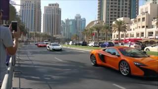 Dubai Grand Motor Parade   2015