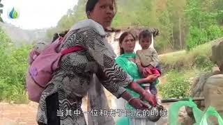 """西藏""""一妻多夫""""的家庭,晚上是怎么分配时间的?看完好尴尬 国语高清"""