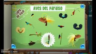 ubicacion de aves en animal jam
