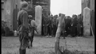 kalaschnikov als sturmgewehr oder stg 44 selbst