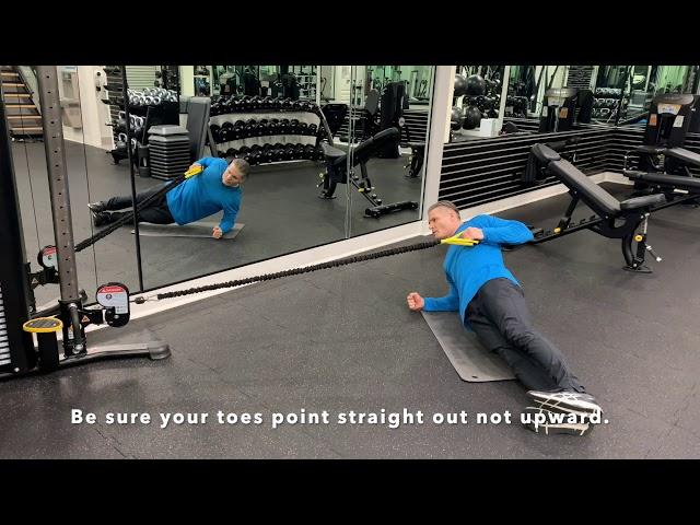 RB Side Plank 1 Arm Row
