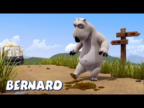 Bernard Bear | Stepped on WHAT?! AND MORE | Cartoons for Children