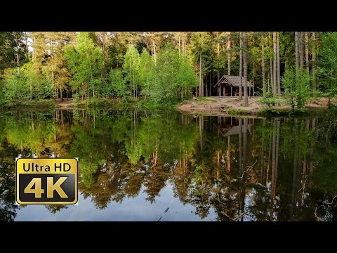 Dresden Natur Docu - amazing 4k video ultra hd FZ1000