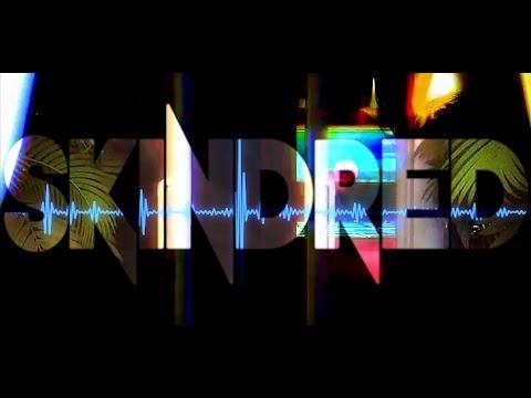 Skindred - That's My Jam (Lyrics)