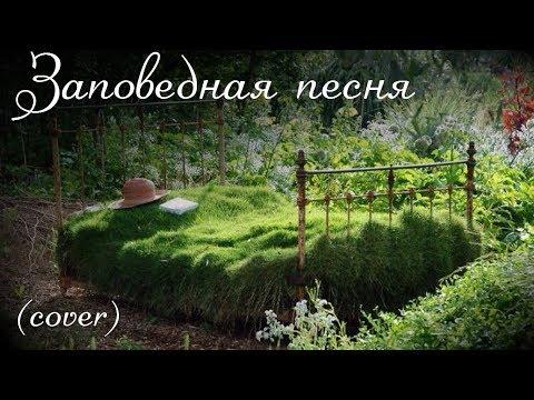 Клип Борис Гребенщиков - Заповедная песня