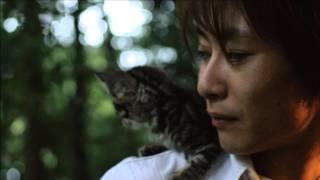 TAKANO TOMOFUMIn Cover Vol.2 『PRIDE』 今井美樹 HP http://www.takan...