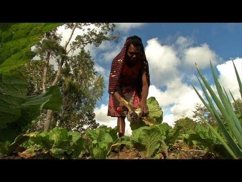 Farming gives women financial independence in rural Indonesia