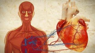 Slightly Disturbing Human Body Facts