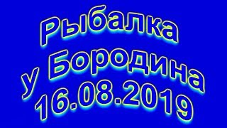 Рыбалка у Бородина 16 17 08 2019