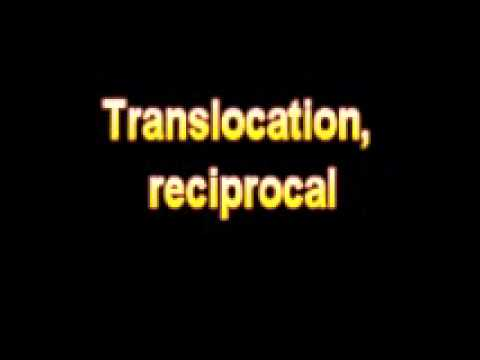 What Is The Definition Of Translocation, Reciprocal