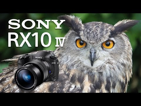 Sony RX10 Mk IV Unveiling & Review
