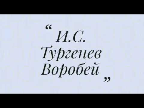 Изображение предпросмотра прочтения – АннаСандркина читает произведение «Стихотворение в прозе Воробей» И.С.Тургенева