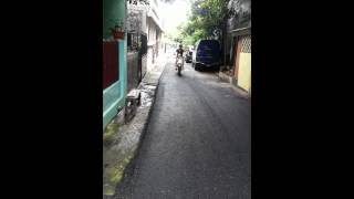Shih Tzu On Action : Michi Rides A Motorbike