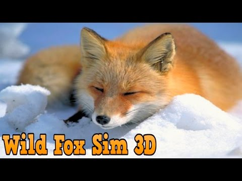 #Wild #Fox #Simulator 3D - Turbo Rocket Games #Simulation - iTunes/Android