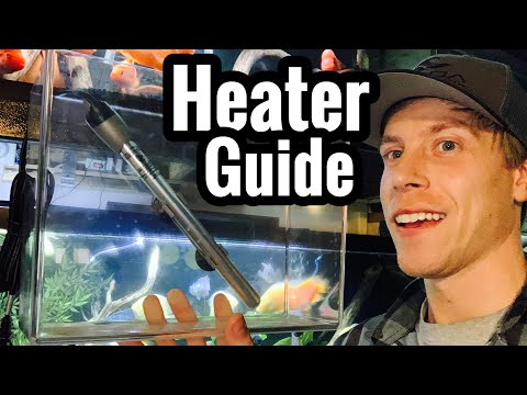 Fish Tank Heater - How To Setup? Aquarium Installation