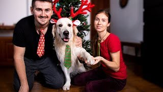 What Does Preparing for CHRISTMAS Look Like with My Dog!