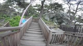 Walk along Haeundae Beach and Songnim Park