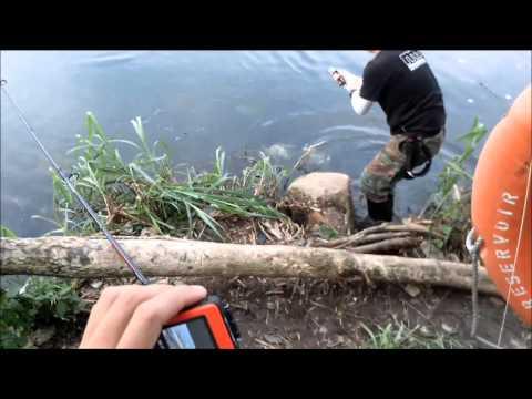 ตกปลาชะโดเหยื่อสดสุดมัน