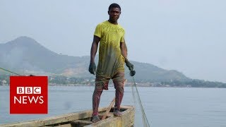 Is China's fishing fleet taking all of West Africa's fish? - BBC News