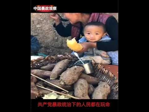 共产党暴政统治下的人民都在玩命,中国暴政观察记者:瞿成松报道