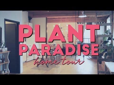 ESCAPE INTO THIS PLANT PARADISE | House Plant Home Tour