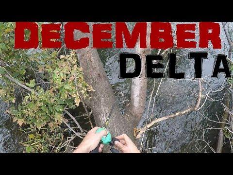 WINTER DELTA \ SAN JUAQUIN FISHING | LATHROP & WESTON RANCH | EPIC
