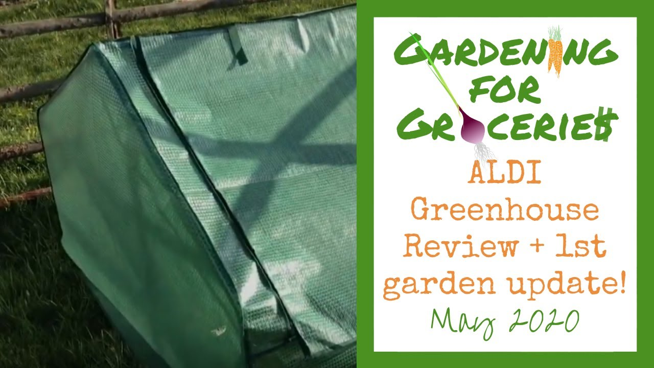 1st Garden Update 2020 Aldi Greenhouse Review Gardening For Groceries Gardening For Busy Moms Youtube