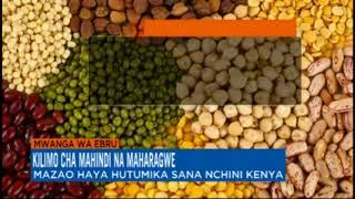 KILIMO CHA MAHINDI NA MAHARAGWE