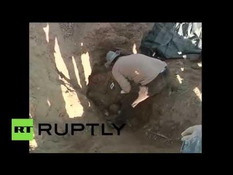 В Ираке обнаружены...