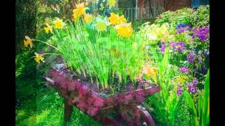 Wooden Wheel Barrow Planter- From Wooden Pallets.