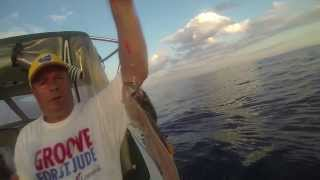 Мопс заехал в Каролино-Бугаз или морская рыбалка Мопса