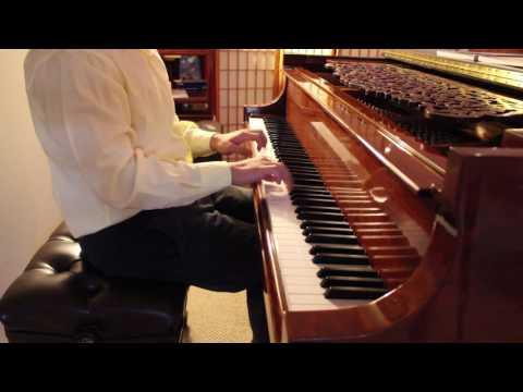 Flight of the Bumblebee - Rimsky korsakov/Rachmaninoff - John Yang