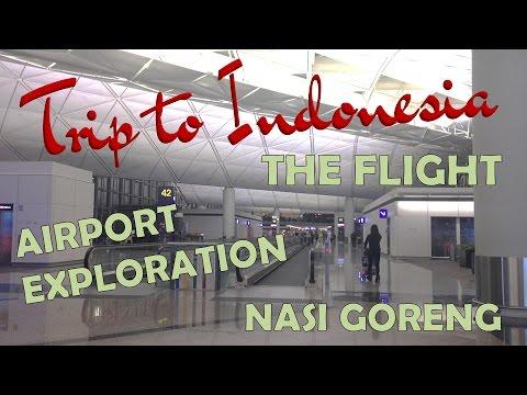 TRIP TO INDONESIA | Flight to Jakarta