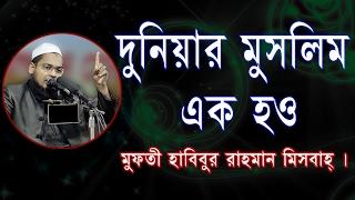 New Bangla Waz Habibur Rahman Mesbah 2017